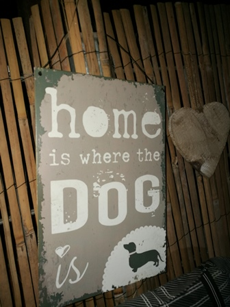 home is where the dog is...